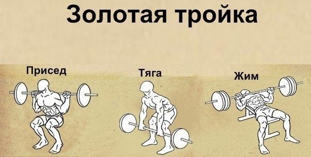 Делайте базовые упражнения